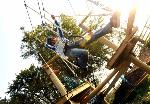 Junior Treetops Courses